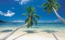 Rymdresor från det tropiska Västindien?
