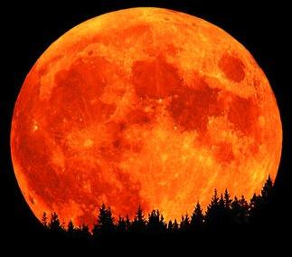 Branson: Nästa anhalt, månen